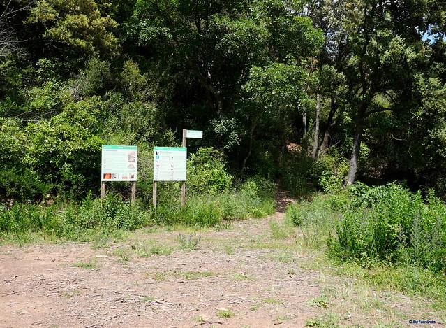 Roquer del Penitent -01- Parquing y sendero de acceso 01 (06-06-2021)