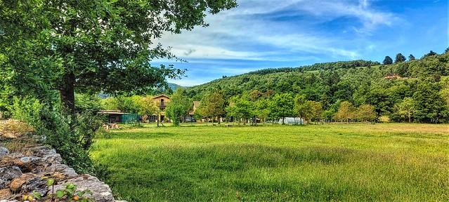 Primavera en Marquina.  Valle de Zuia.  Alava.