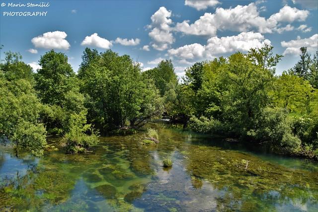 Just a pure nature... - River Mrežnica, Karlovac, Croatia