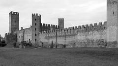 Montagnana, Veneto