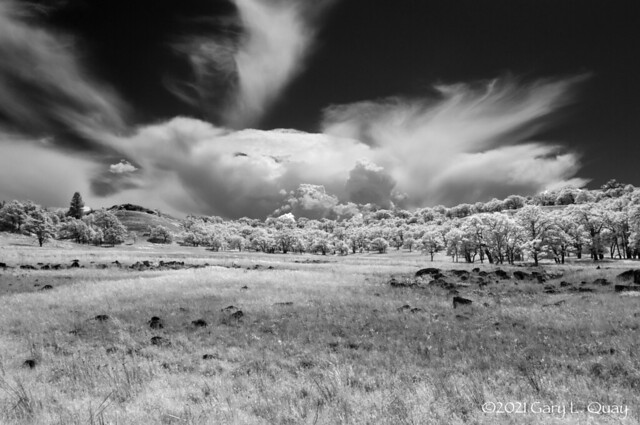 Field and Clouds, Mosier, Oregon