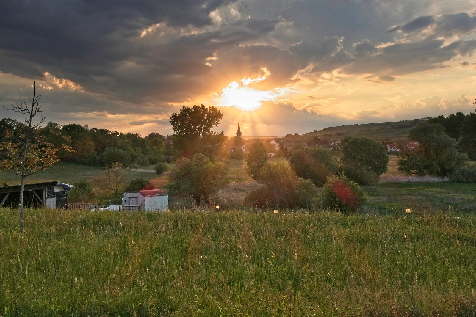 Abendsonne über Stadecken - Hiwweltour Stadecker Warte