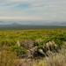 "<p><a href=""https://www.flickr.com/people/kodak260/"">Kodak Photographer NL</a> posted a photo:</p>  <p><a href=""https://www.flickr.com/photos/kodak260/51232367670/"" title=""190907 - Oregon - Mount Shasta Roadtrip - 03 Lake Shastina 1028""><img src=""https://live.staticflickr.com/65535/51232367670_d9d0392542_m.jpg"" width=""240"" height=""162"" alt=""190907 - Oregon - Mount Shasta Roadtrip - 03 Lake Shastina 1028"" /></a></p>  <p>Northern-California Scenery - Graham (USA)<br /> <br /> <a href=""https://youpic.com/Kodak260"" rel=""noreferrer nofollow"">youpic.com/Kodak260</a><br /> <a href=""http://kodak260.nl/"" rel=""noreferrer nofollow"">kodak260.nl/</a></p>"