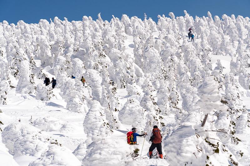 西吾妻山の樹氷群