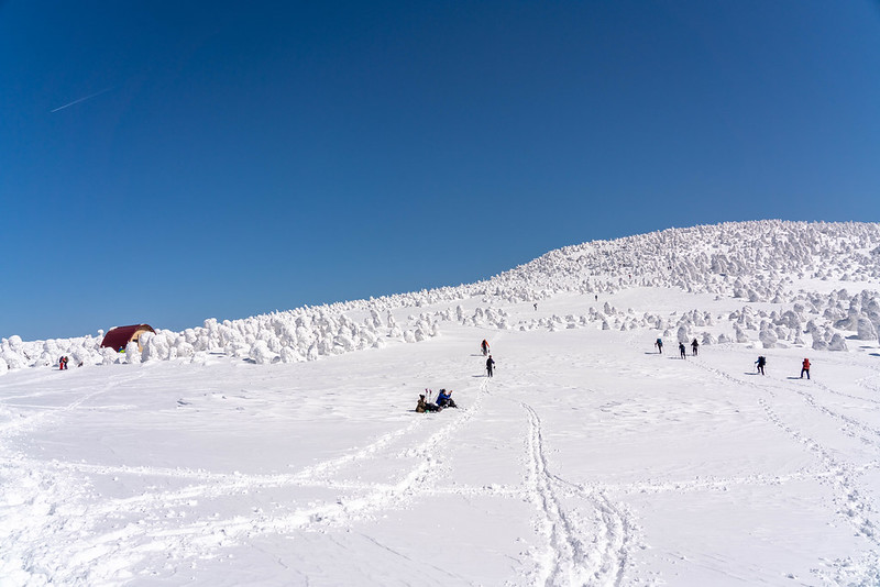 冬の西吾妻山の雪原