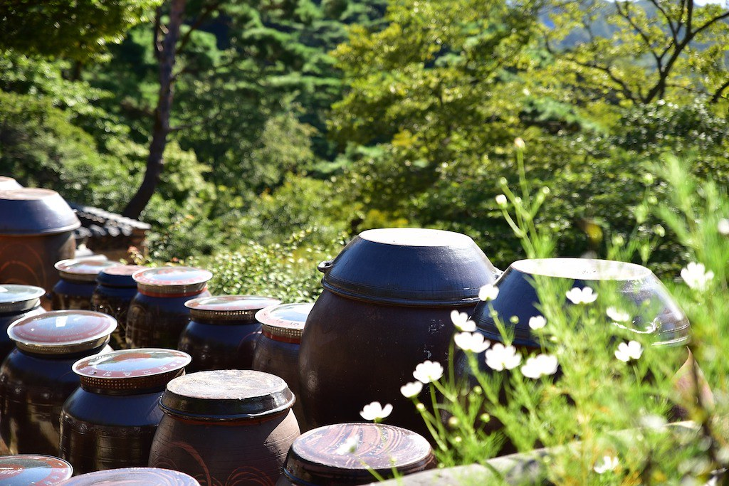 Pots used to store Korean soy sauce.