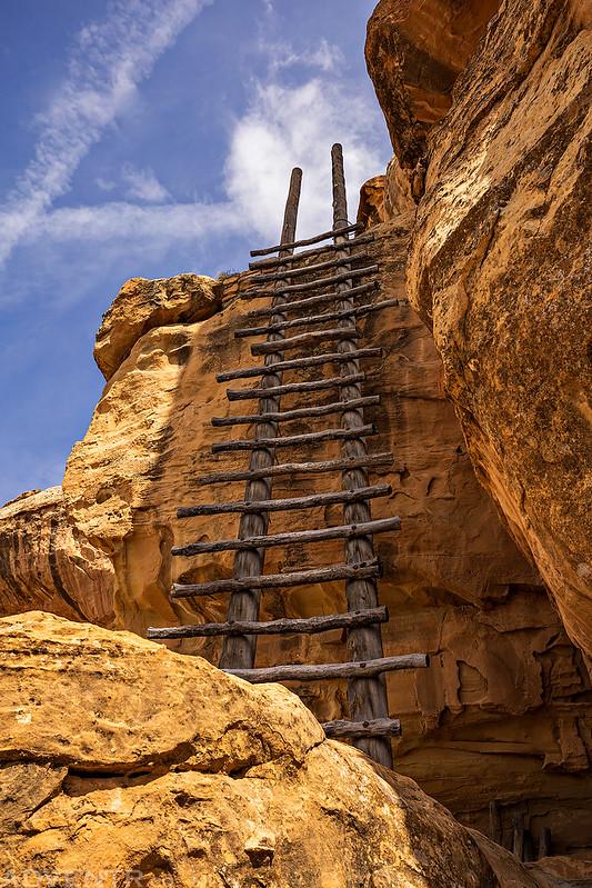 Eagles Nest Ladder