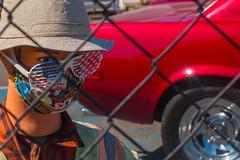 Gonzo Car Lot