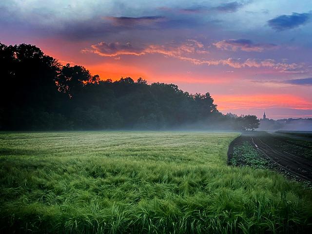 Juniabend in Stein