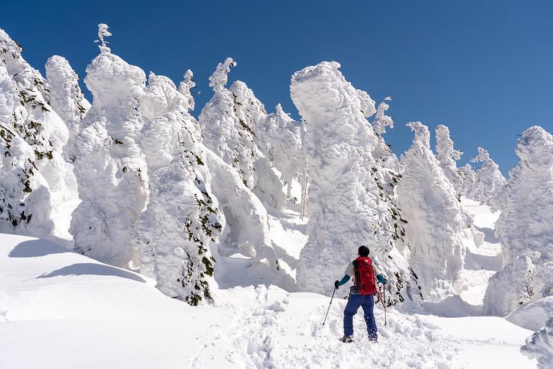 西吾妻山の巨大な樹氷