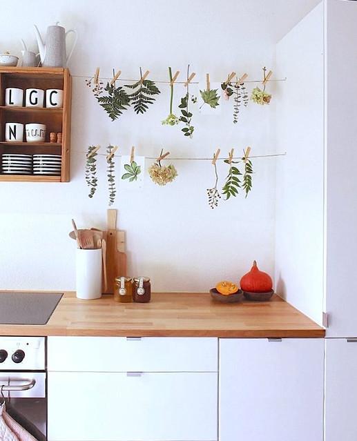 Botanical / Herb Wires