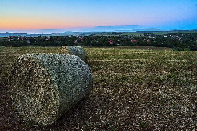 bales in sunset