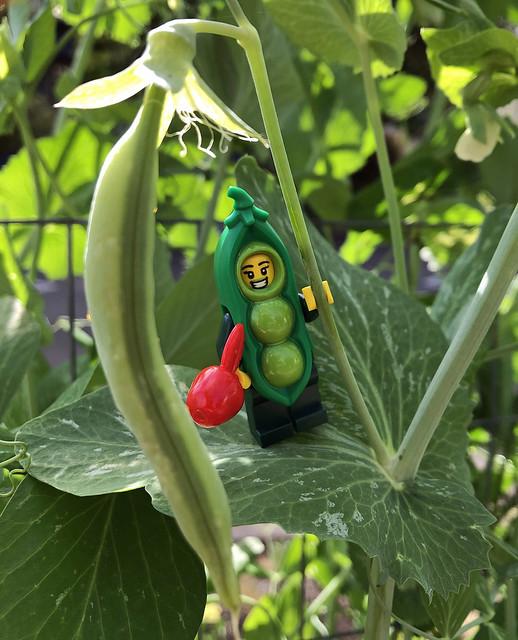 LEGO Collectible Minifigures Series 20: Pea Pod Costume Girl