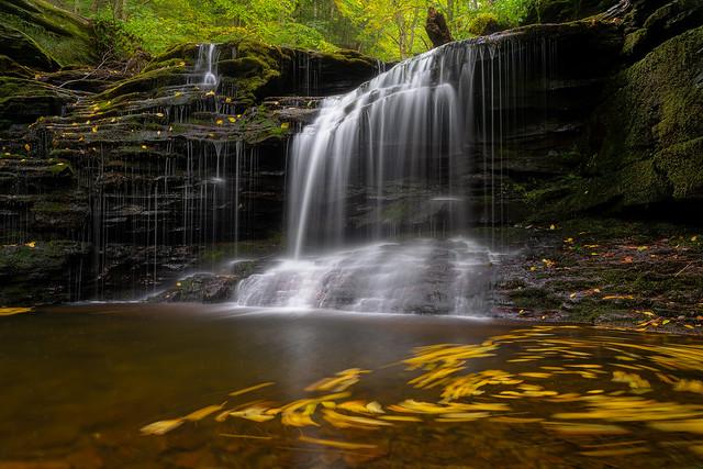Ricketts Glen Falls Loop Trail