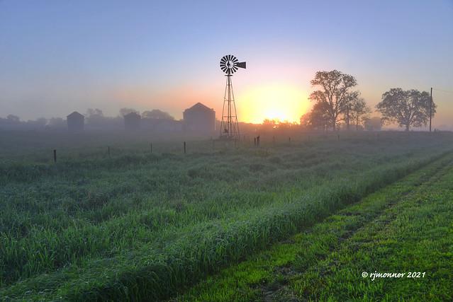 Misty Morning_213951