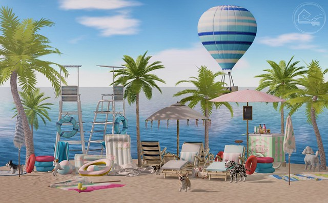 We inaugurate the beach