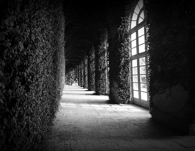 il giardino dentro - the garden inside
