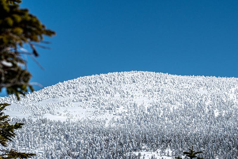 西吾妻山のスノーモンスターが見えてきた