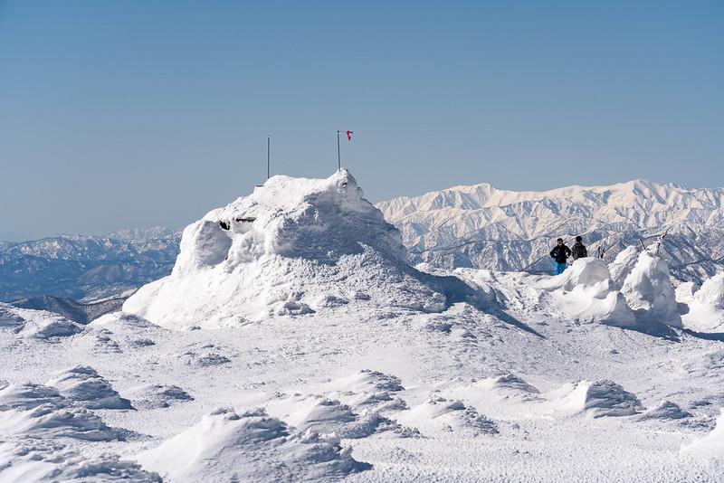 冬の吾妻神社