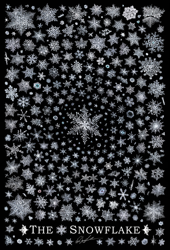 """""""The Snowflake"""" - Up for Auction as NFT"""