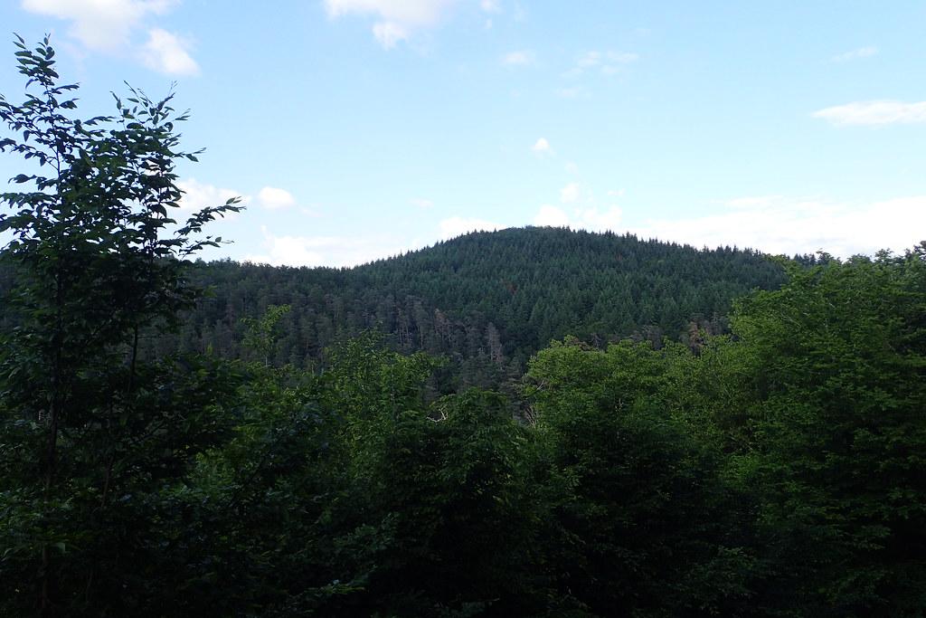 Ruisseau du Ricochet