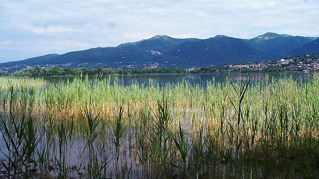 lago e Brianza