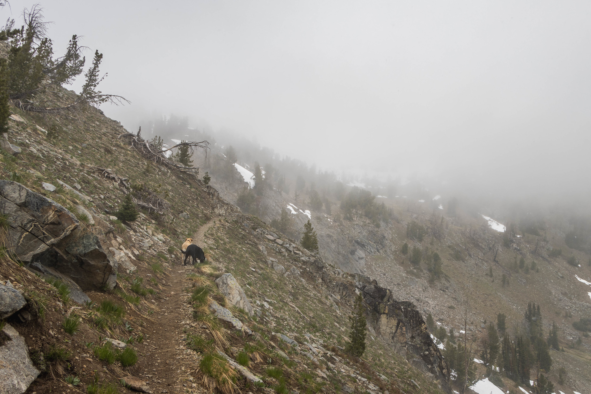 Through Horsethief Basin