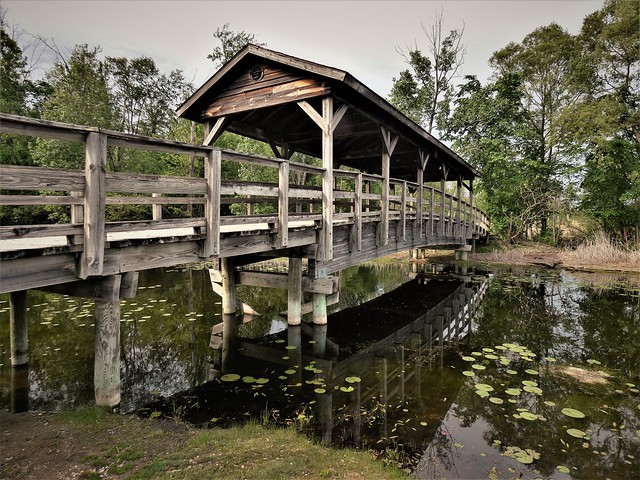 Worn Out Covered Bridge