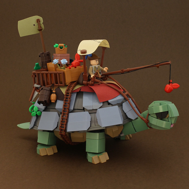 Tortoise-Back