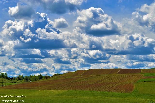 Colors of sky&land.... - Zadobarje, Croatia