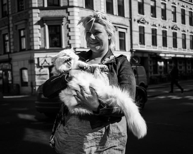 Lady with Cat [Explore]