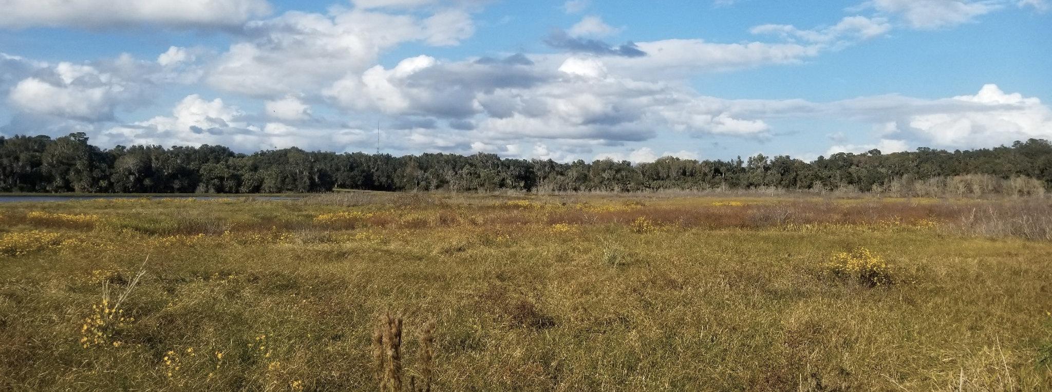 Land Conservation Board