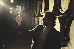 Quino - Wine cellar III