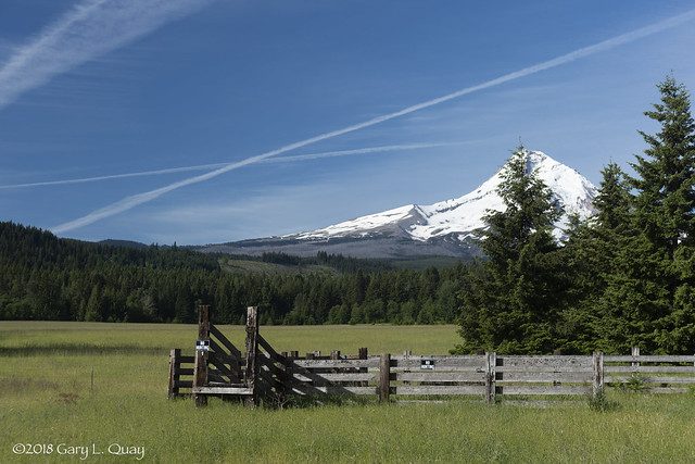 Mount Hood and Field, Parkdale, Oregon