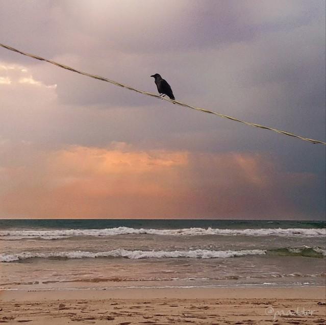 Evening Mood in Sri Lanka