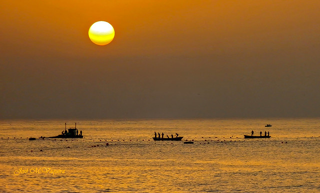Pesca tradicional / Traditional fishing