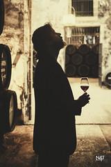 Quino - Wine cellar
