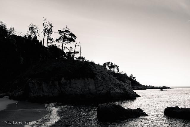 Playa de Los Enamorados, Quintero (Chile)