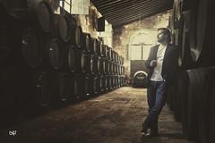 Quino - Wine cellar II
