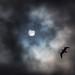 Partial Solar eclipse, UK 2021