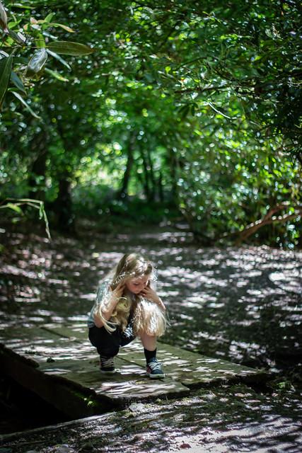 Finding her feet through the mane.