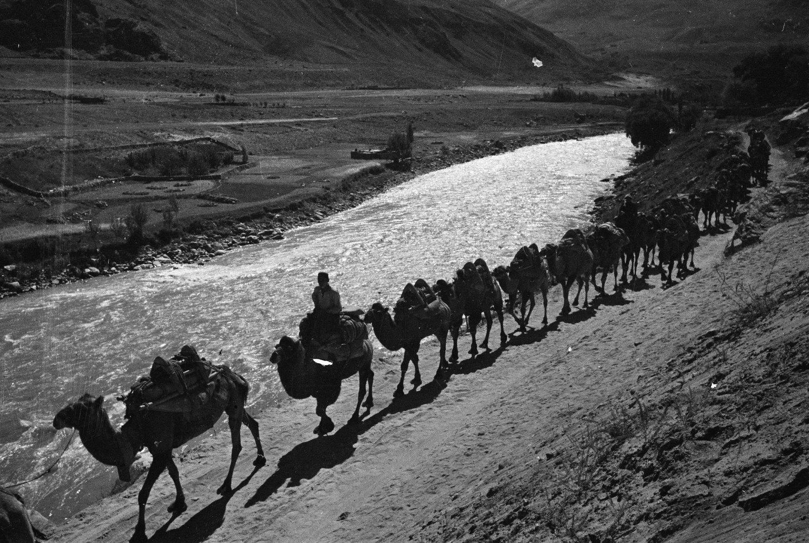 1937. Памирская трасса. Караван идет вдоль реки