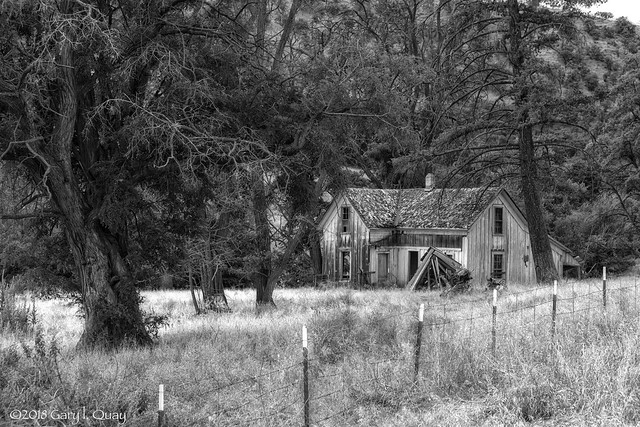 Abandoned House, Eight Mile Road