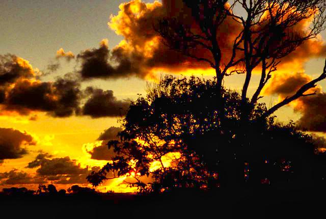 Norfolk Island Sunset