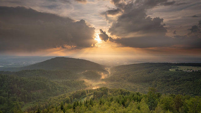 A river of haze moves through the waldprecht valley into the rhine plain