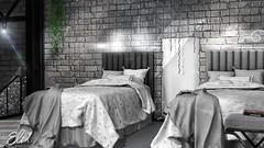 Elm. Eva Single Bed & String Lights - Collabor88