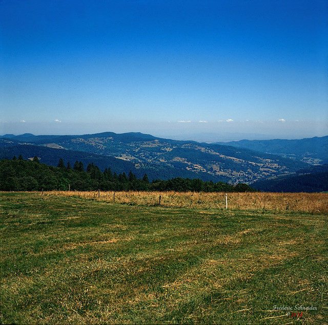 Top of Alsace