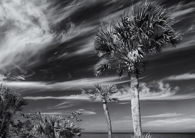 Sky over Caspersen beach