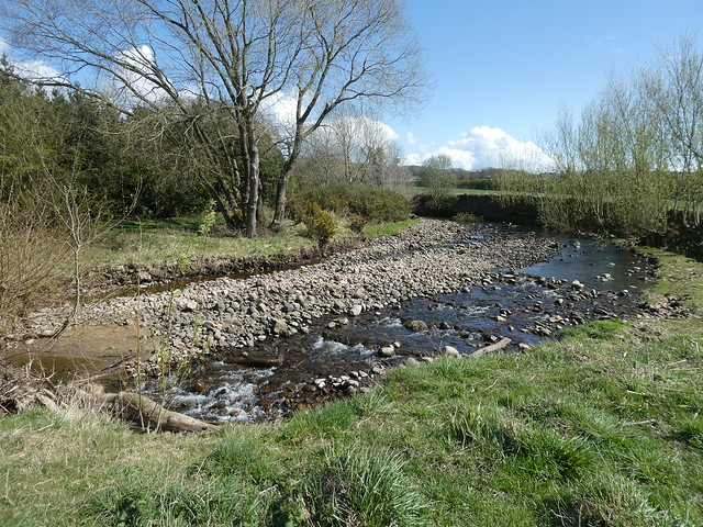 Catterall - River Calder [Bend & Stones] 210409