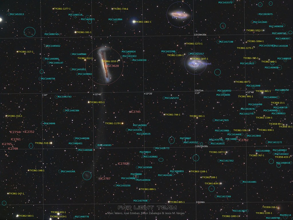 Leo Triplet ( M65-M66-NGC3628 )